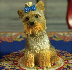 Hund Boo yorkshire terrier röd rosett