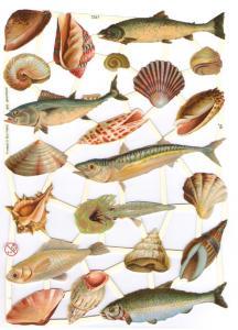Bokmärken fiskar 3