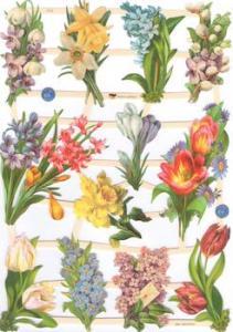 Bokmärken blommor vårblom