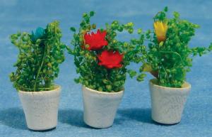 3 blommor i krukor