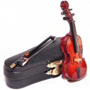 Cello med fodral