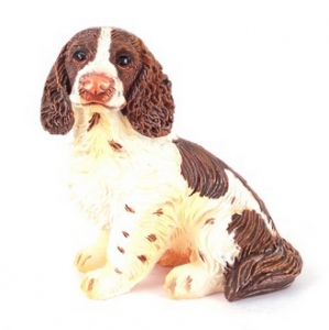 Hund Springer Spaniel sittande
