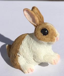 Kanin brun vit sittande