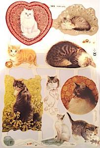 Bokmärken katter kattungar
