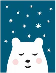 Polar night, Roommate. bear & stars