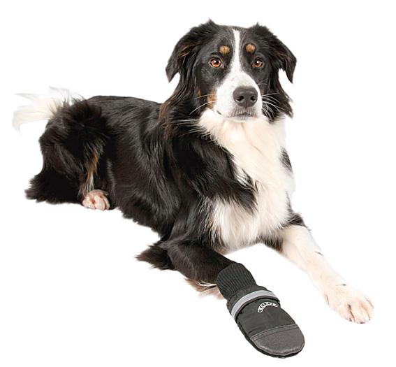 Hundsko Walker Professional 2-pack