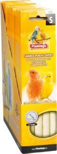Flamingo sandrör undulat/kanarie 4-pack
