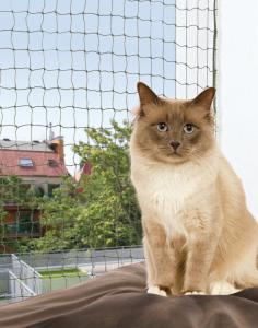 Cat Protect kattnät med wire, olivgrönt