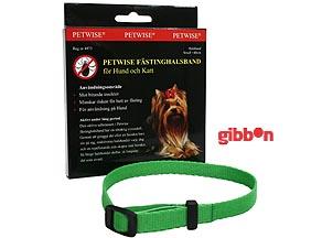 Petwise fästinghalsband för hund, small <40 cm