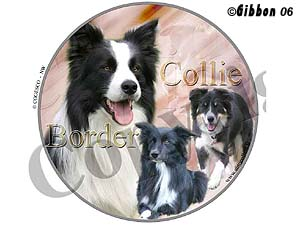 Dekal rund Border Collie