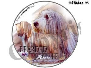 Dekal rund Bearded Collie