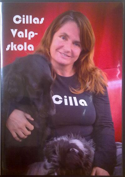 Cillas Valpskola, DVD