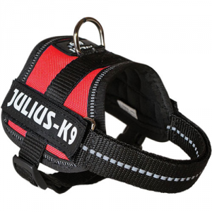 Julius-K9 Powerharness röd
