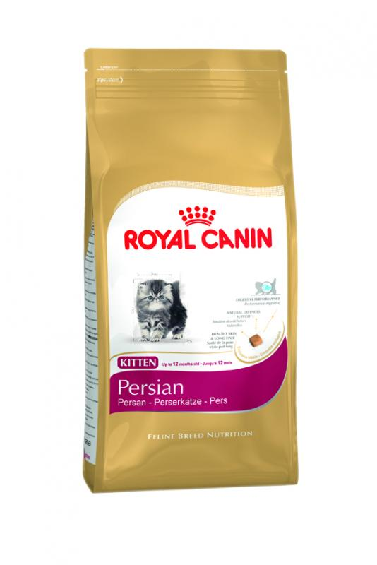 royal canin kitten persian. Black Bedroom Furniture Sets. Home Design Ideas