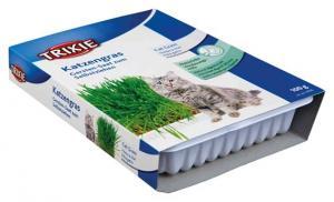 Kattgräs 100 g