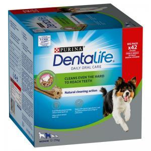 Dentalife Medium 42-pack