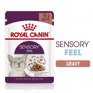 Royal Canin WET Sensory Feel Gravy