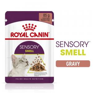 Royal Canin WET Sensory Smell Gravy
