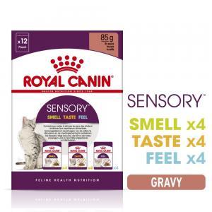 Royal Canin WET Sensory Gravy, mixed box 12x85 g