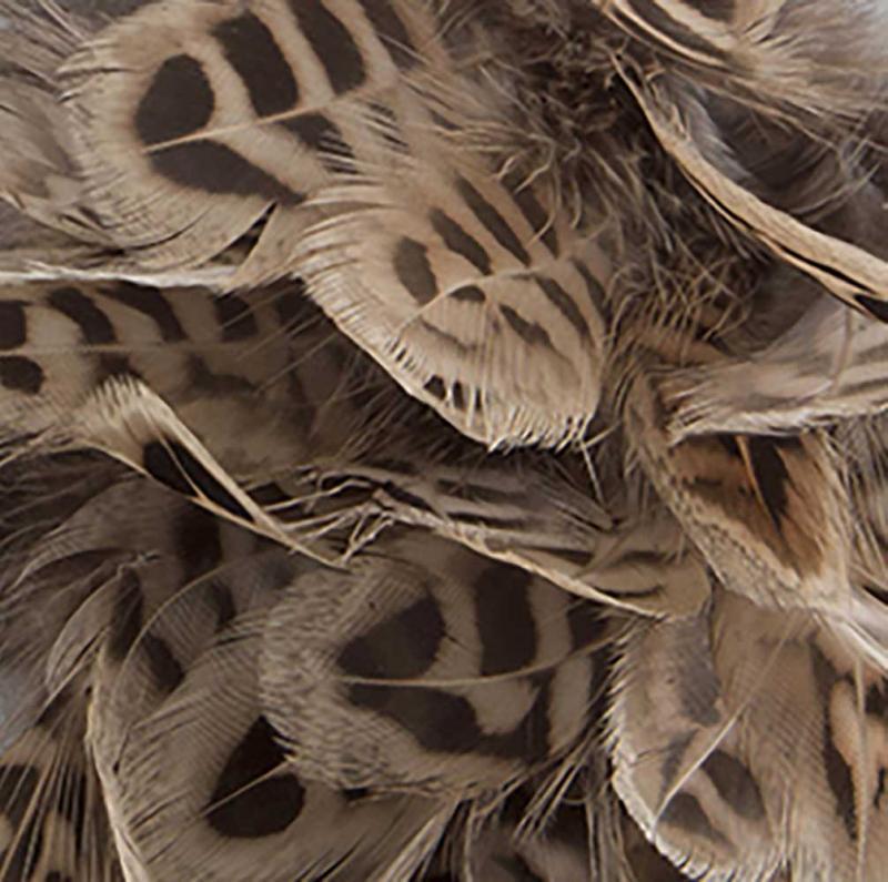 Fjäder - randiga trådade fjädrar för påskris
