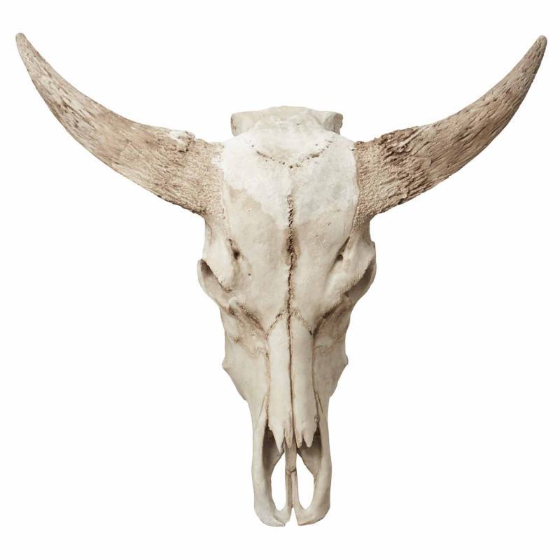 Jakttrofe  -  djurhuvud för dekoration