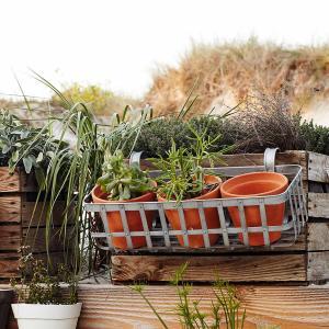 Balkonglåda i hållbar zink inklusive krukor för vacker plantering