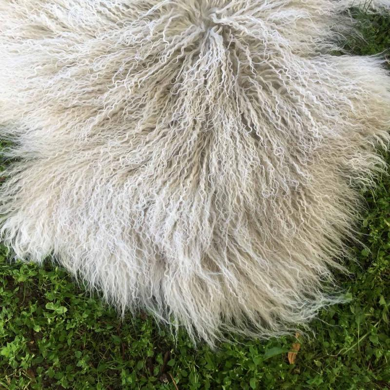 vitt tibetanskt lammskinn närbild