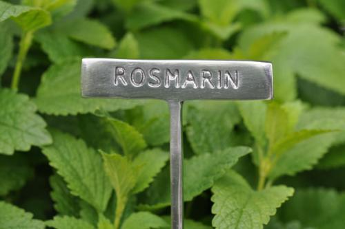 Växtskylt ROSMARIN
