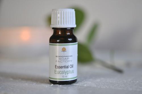 Eterisk olja - Eukalyptus