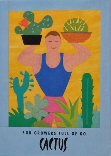Seed Packet Postcard - Cactus