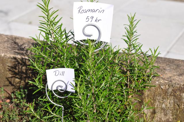 Växtskylt -  20 cm