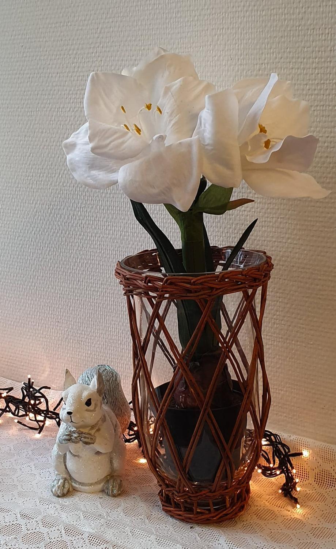 Amaryllis - Vit - 45 cm