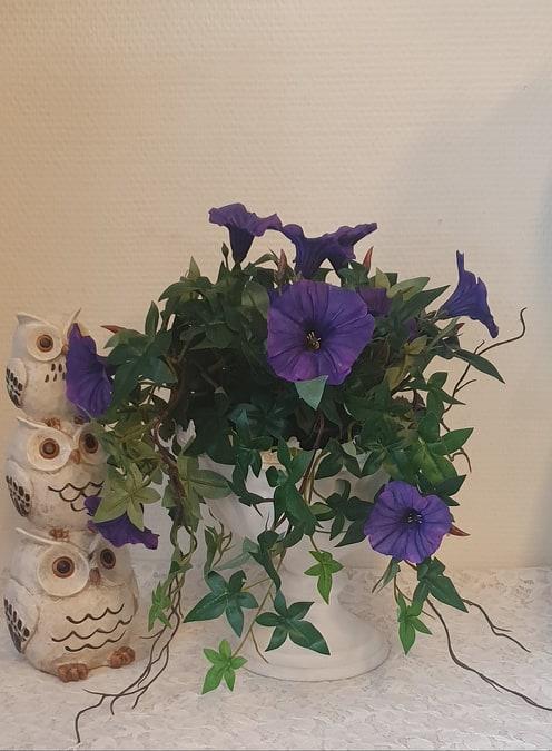 Blomma För Dagen - Mörkblå