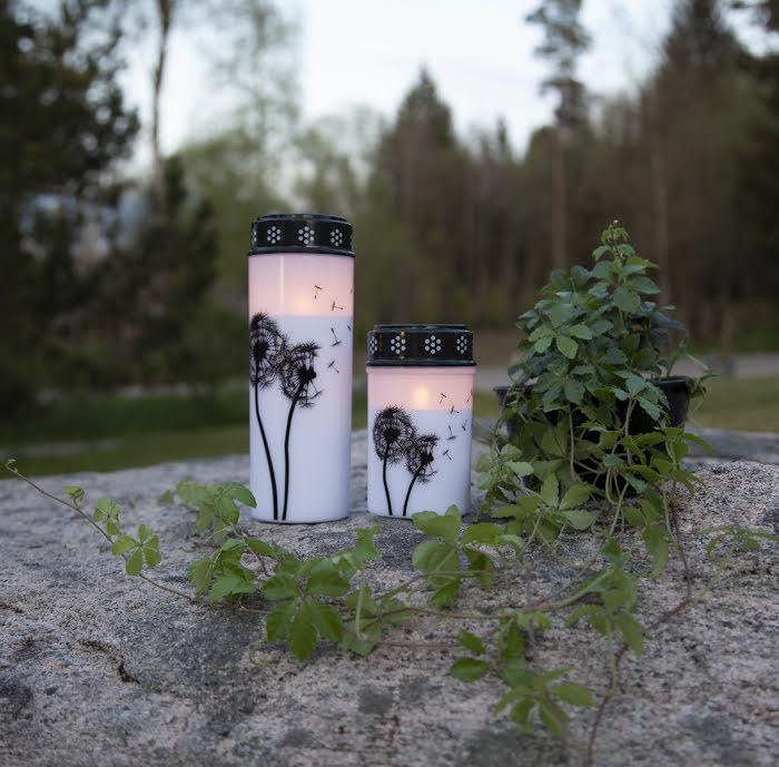 LED-Gravljus Maskrosfrön