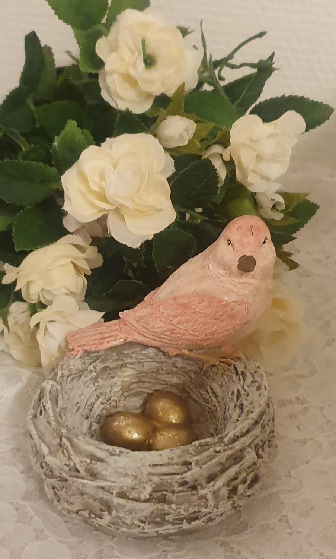 Fågel Med Fågelbo Och Ägg