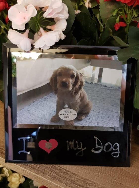 Fotoram Glas I Love My Dog