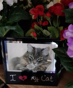Fotoram Glas I Love My Cat