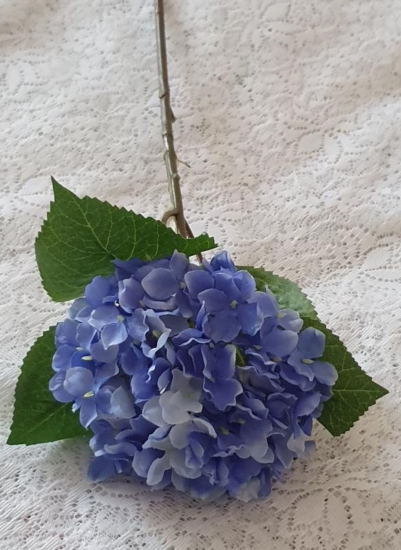 Hortensia Blå - 40 cm