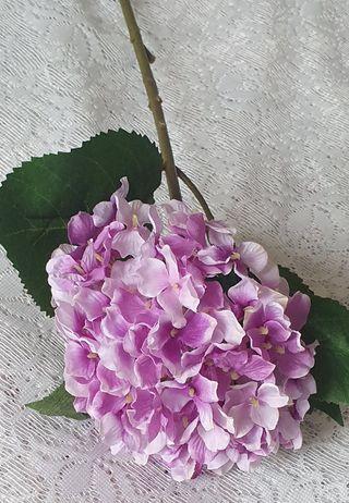 Hortensia Lila - 40 cm