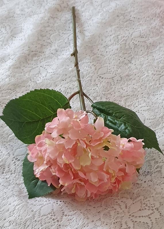 Hortensia Rosa - 40 cm