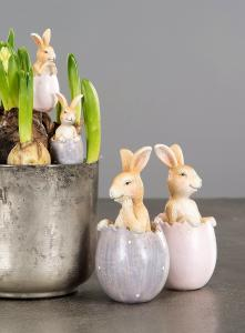 Kaniner I Ägg 2 - Pack