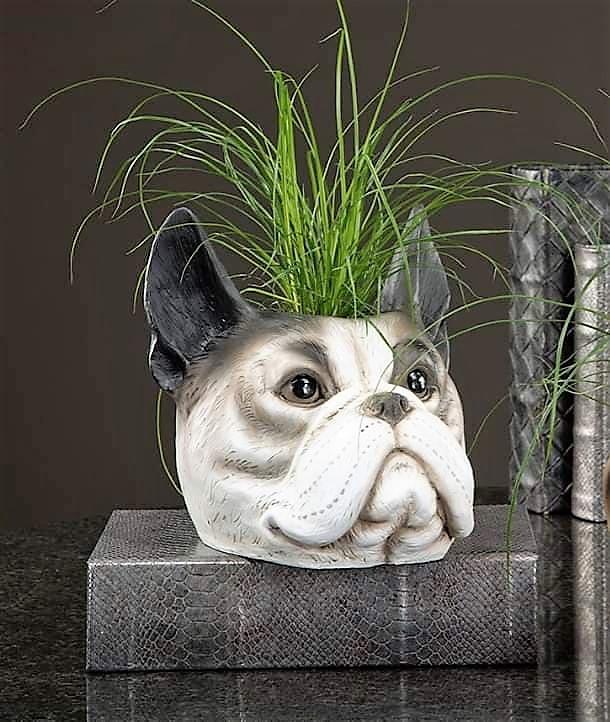 Kruka Bulldog