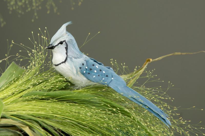 Ljusblå Fågel På Stick