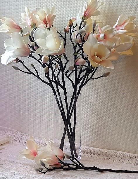 Magnolia Vit/Rosa