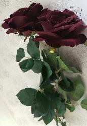 Stor Mörk Vinröd Ros med blad