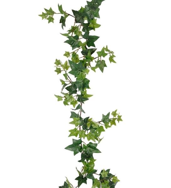 Murgröna Girlang