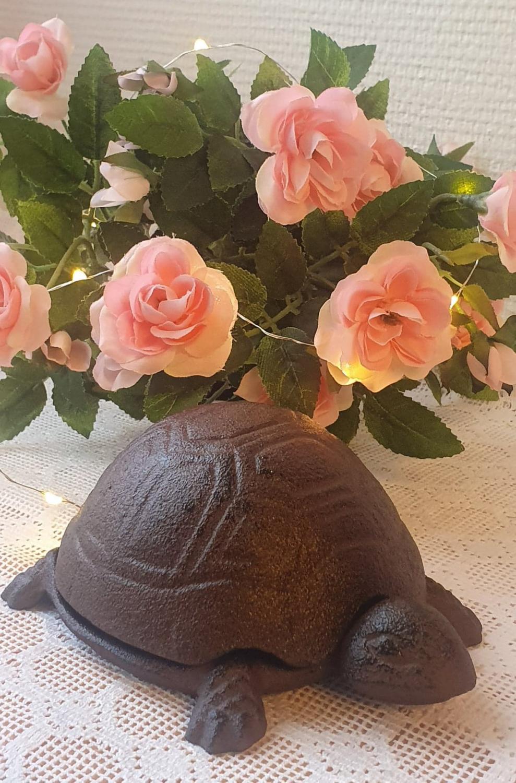 Nyckelgömma Sköldpadda