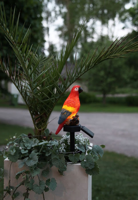 Papegoja Solcellslampa Trädgårdsdekoration