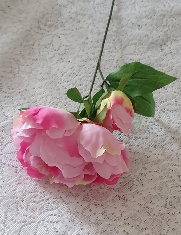 Pion Rosa - 35 cm