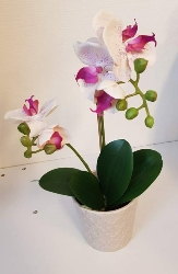 Konstgjord Phalaenopsis Rosa/Lila